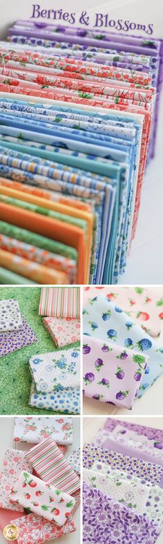 Berries & Blossoms by Kim's Cause for Maywood Studio is a colorful fabric collection available at Shabby Fabrics!