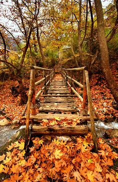 Wooden bridge at the entrance of the remote village of Athamania, Trikala, Greece