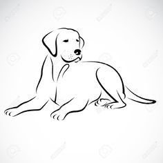 Vector Image Of An Dog Labrador On White Background Royalty Free ...