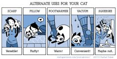 Alternate uses for your cat