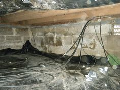 Here, you can see how widespread the water intrusion really is in this crawlspace.