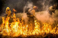 Images Of California's Wildfires Are Straight Out Of The Apocalypse www.carbonated.tv