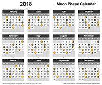 Fiscal Year Calendar  Ejercicio    Yearly Calendar