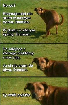 got a point Wtf Funny, Funny Jokes, Hilarious, Funny Photos, Funny Images, Meme Pictures, Best Memes, Dankest Memes, Polish Memes