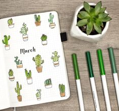 Cactus themed bullet journal setup for March. Check out the video: https://youtu.be/No7rrDGhA3k