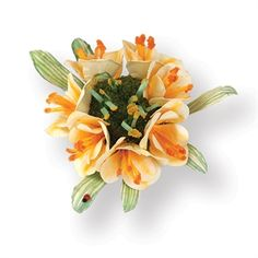 Picture of Sizzix Thinlits Die Clivia Flower