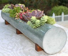 LARGE Succulent Arrangement in Rustic Handmade Metal Trough Planter, Rustic Wedding Centerpiece