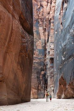Buckskin Gulch in Paria Canyon, Kanab area, Utah, is the longest and deepest slot canyon in the SW U.S.