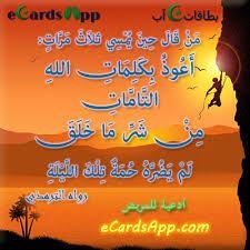 أعوذ بكلمات الله التامات من شر ما خلق Neon Signs Arabic Allah