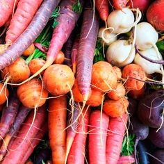Top 10 Root Vegetables to Replace Grains