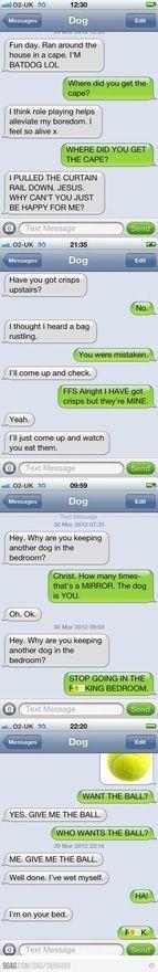 Dog txt