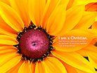 I am a Christian. Wallpaper - Free Nature Desktop Backgrounds