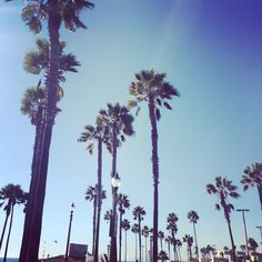 "Instagram @pslilyboutique ""Falling into fall  @ibakefilm #happywednesday #love #losangeles #huntingtonbeach #california #instagood #instadaily #love #loveit"""