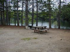 Camp site at Lake Eaton Campground - NYSDEC Campgrounds