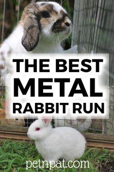 The Best Metal Rabbit Run – 5 Top Picks 2020! #rabbit #pets #animals #bunny #rabbithutch #rabbitrun