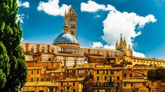 Spend touring the Tuscany region from Florence with the assistance of a Tour Leader. Head to Siena where you will see important areas such as Piazza del Campo. Then, make your way to the Chianti area to admire the landscape before touring the Siena, Maldives Resort, Italian Language, Toscana, Eastern Europe, Study Abroad, Luxury Travel, Best Hotels, Taj Mahal