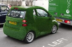 We saw one of these! Easygrass.com pr stunt