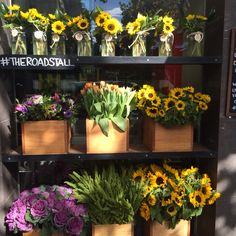 157 Spring St Melbourne - The Road Stall - flowers sunflowers local flowers tulips