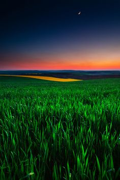 Twilight Fields by Evgeni Dinev, Bulgaria, via Beautiful World, Beautiful Places, Beautiful Pictures, Beautiful Moon, All Nature, Amazing Nature, Landscape Photography, Nature Photography, Photography Tips