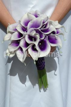 Searching for good silk flowers :  wedding flowers lillies suggestions Picasso Purple Calla Lily Bouquet