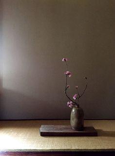 Cherry blossoms Spring 2015 Ikebana by Nolita Jpn Cherry blossoms Spri Arrangements Ikebana, Ikebana Flower Arrangement, Flower Vases, Flower Art, Floral Arrangements, Cactus Flower, Deco Floral, Arte Floral, Floral Design