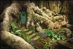 Fairy door inspiration - i LOVE the way this one is tucked so well among the tree roots ... the moss-lines steps leading up to the door, and tiny ferns and plants beside make everything look perfectly in place - a boat pulled up alongside? This one is SO perfect, it looks more like a painting than a fairy garden, but great inspiration either way