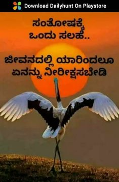 Life Lesson Quotes, Life Lessons, Mather Day, Saving Quotes, Gita Quotes, Failure Quotes, Karnataka, Good Morning Quotes, Pictures Images