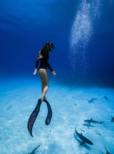 Indulge in the ocean world~ Cliff Diving, Shark Diving, Swimming Diving, Diving Helmet, Cage Diving With Sharks, Scuba Diving Suit, Underwater Swimming, Deep Diving, Cave Diving