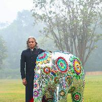 Pet Dogs, Dog Cat, Pets, Elephant Parade, Indian Elephant, Elephants, Cow, Birds, Craft