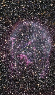 Large Magellanic Cloud, LMC, N 132D