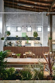 Wild Herb Cafe - Studio Joanna Laajisto