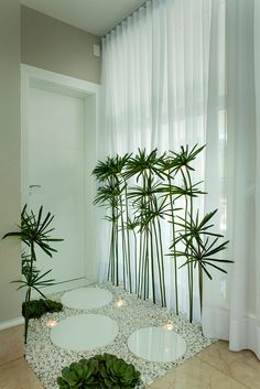 Mini Garden Inside the House. You must have tried all kinds of ways to decorate your house, but you always feel that there are a little life House Plants Decor, Plant Decor, Interior Garden, Home Interior Design, Interior Decorating, Decorating Ideas, Decor Ideas, Deco Zen, Living Room Decor