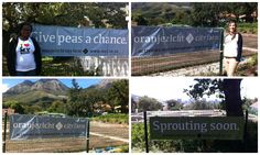 Madame Zingara visited OZCF to see the development of South Africa's first ever Urban City Farm