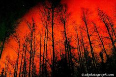 Northern Lights ~AK - looks somehwat like they did when I saw them from our back yard last week in Western KY...