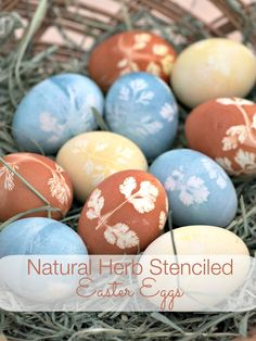Natural Herb Stenciled Easter Eggs - Easter eggs made with natural dyes using herbs to create a pretty pattern.  The eggs are dyed with turmeric, red cabbage and onion skins.