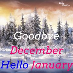 Goodbye December Hello January Gif January Month, Hello January, December, January Pictures, Welcome Quotes, Cover Pics For Facebook, Hello Goodbye, Birth Flowers, Tumblr Quotes
