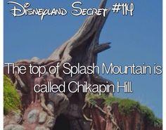 Disney Disney Wtf Facts, Disney World Facts, Disney Princess Facts, Disney World Secrets, Disneyland Secrets, Disney Rides, Disney Love, Walt Disney, Punk Disney Princesses