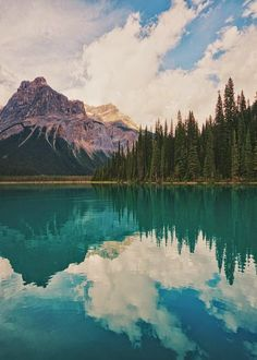 Emerald Lake, Yoho National Park, British Columbia - Remember Hiking around this lake? Yoho National Park, Parc National, Places To Travel, Places To See, Places Around The World, Around The Worlds, Beautiful World, Beautiful Places, Emerald Lake