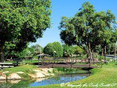 Dhahran Hills Park, Dhahran, Saudi Arabia