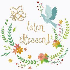 Birthday Greetings, Happy Birthday, Cards, Decor, Happy Brithday, Decoration, Urari La Multi Ani, Happy Birthday Funny, Maps