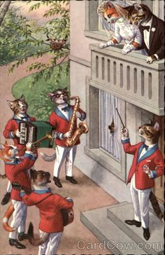 Cats in clothes: Band serenading bride & groom - Publisher: Alfred Mainzer
