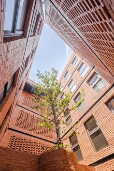 HGR Arquitectos uses orange bricks to build Mexico City apartment block Brick Design, Patio Design, House Design, Brick Architecture, Sustainable Architecture, Archdaily Mexico, Orange Brick, Brick Construction, Internal Courtyard