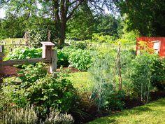 vegetable garden | vegetable garden julia child book 009 » The Antique Garden