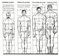 Male proportion in art: normal, idealized, fashion industry, and heroic/classical.