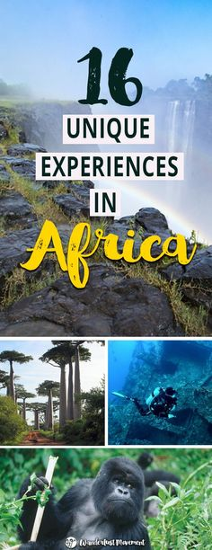 16 Unique Experiences You Need To Have in Africa | Wanderlust Movement