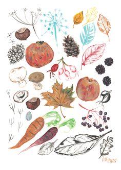Seasons - Polly Fern