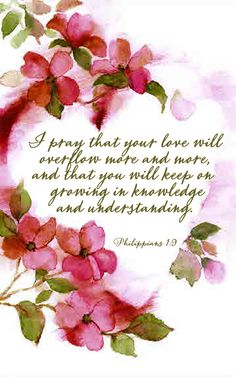 Philippians 1:9 And this I pray, that your love may abound still more and more in knowledge and all discernment, #Agrainofmustardseed