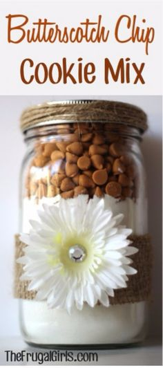 Best Mason Jar Cookies - Butterscotch Cookie Mix Recipe - Mason Jar Cookie Recipe Mix for Cute Decorated DIY Gifts - Easy Chocolate Chip Recipes, Christmas Presents and Wedding Favors in Mason Jars - Mason Jar Cookie Recipes, Mason Jar Cookies, Cookie Jars, Cookie Mixes, Jar Recipes, Cookies In A Jar, Cookie Mix In A Jar Recipe, Chip Cookies, Cake Mix Cookie Recipes