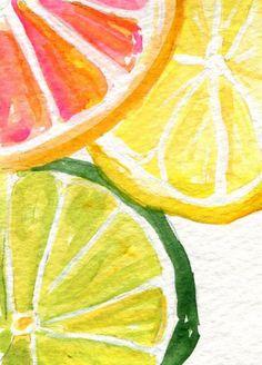 citrus - acuarela