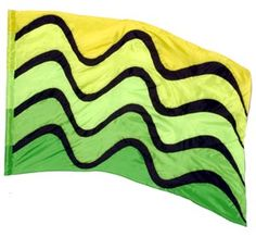 fi569 Green & yellow Color Guard flag from The Band Hall